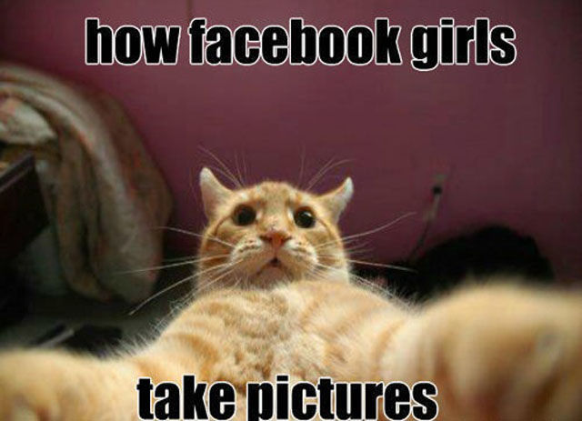 Funny Pictures With Captions Clean With Animals Day 13 – Ten ...